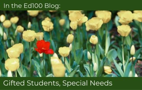 Students With Special Needs Face Double >> 2 7 Special Needs Why Not Teach All Kids Alike Ed100